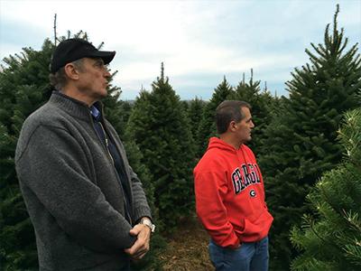 Where Do Christmas Trees Come From Christmas Tree Santas